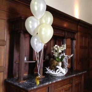 Tros heliumballonnen