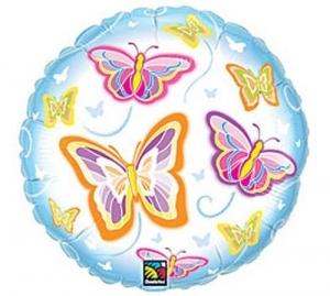 Vlinders helder extra groot